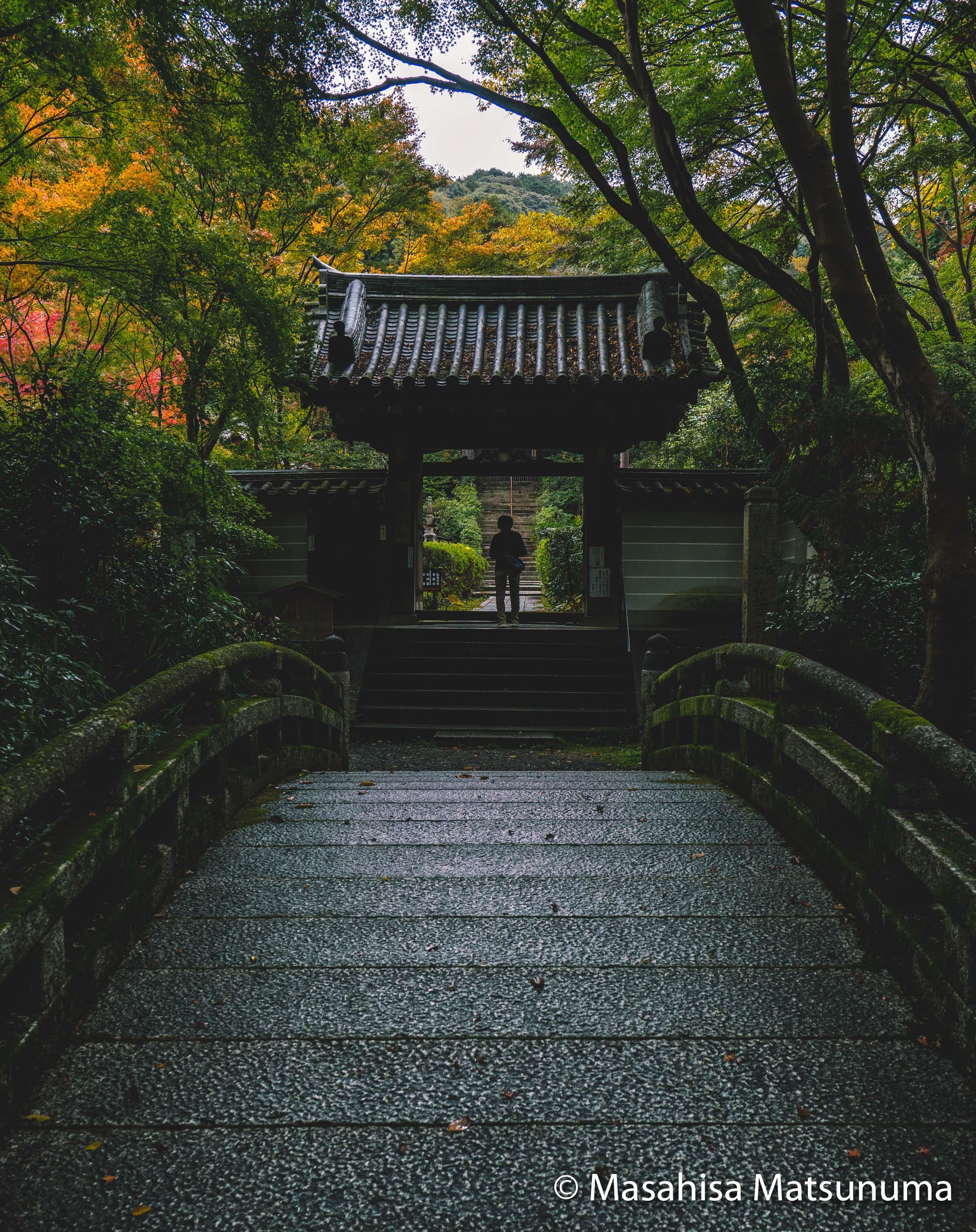 Sennyu-ji Kyoto 来迎院 泉涌寺 京都