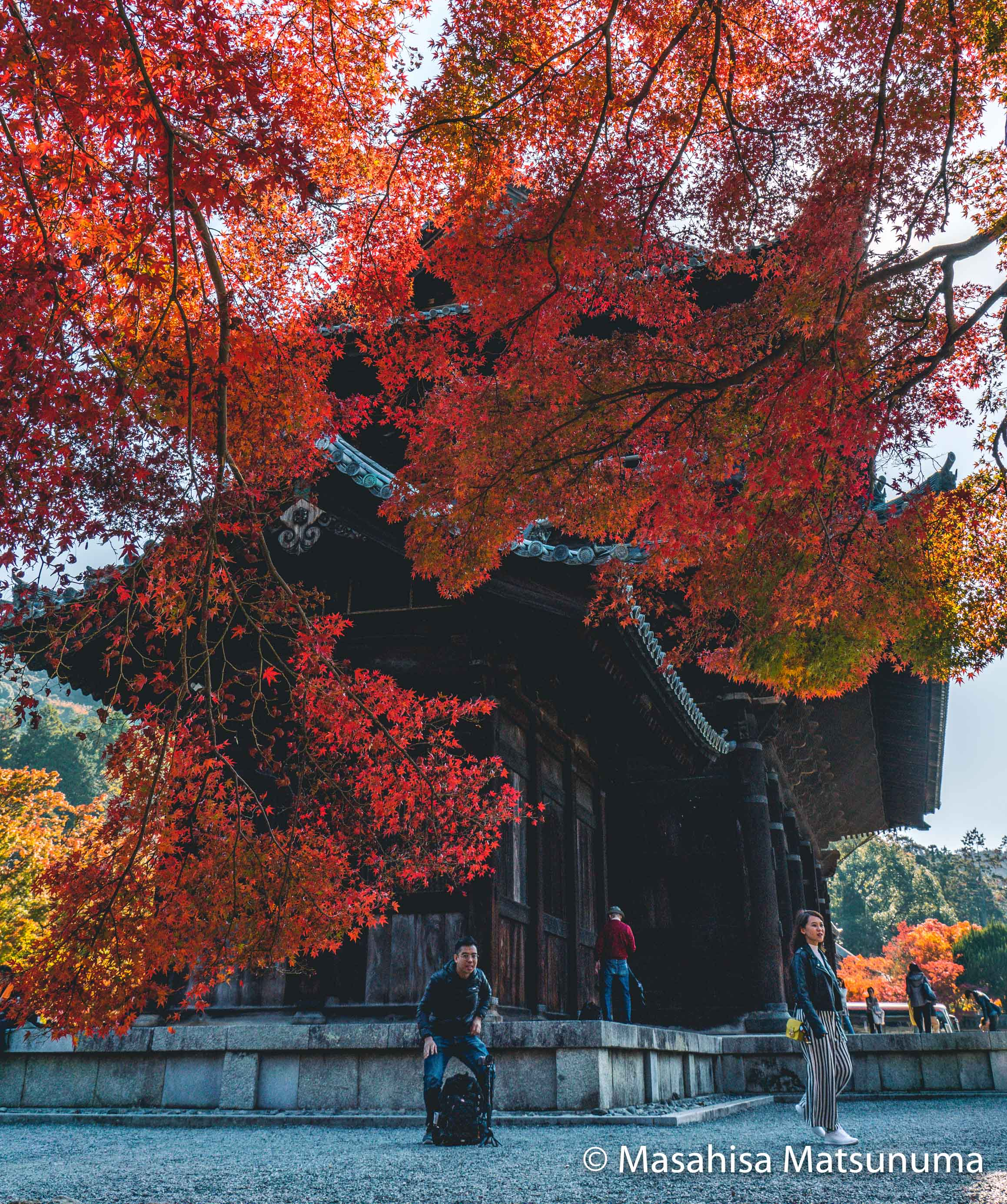 Nanzen-ji 南禅寺 Fall Leaves 紅葉