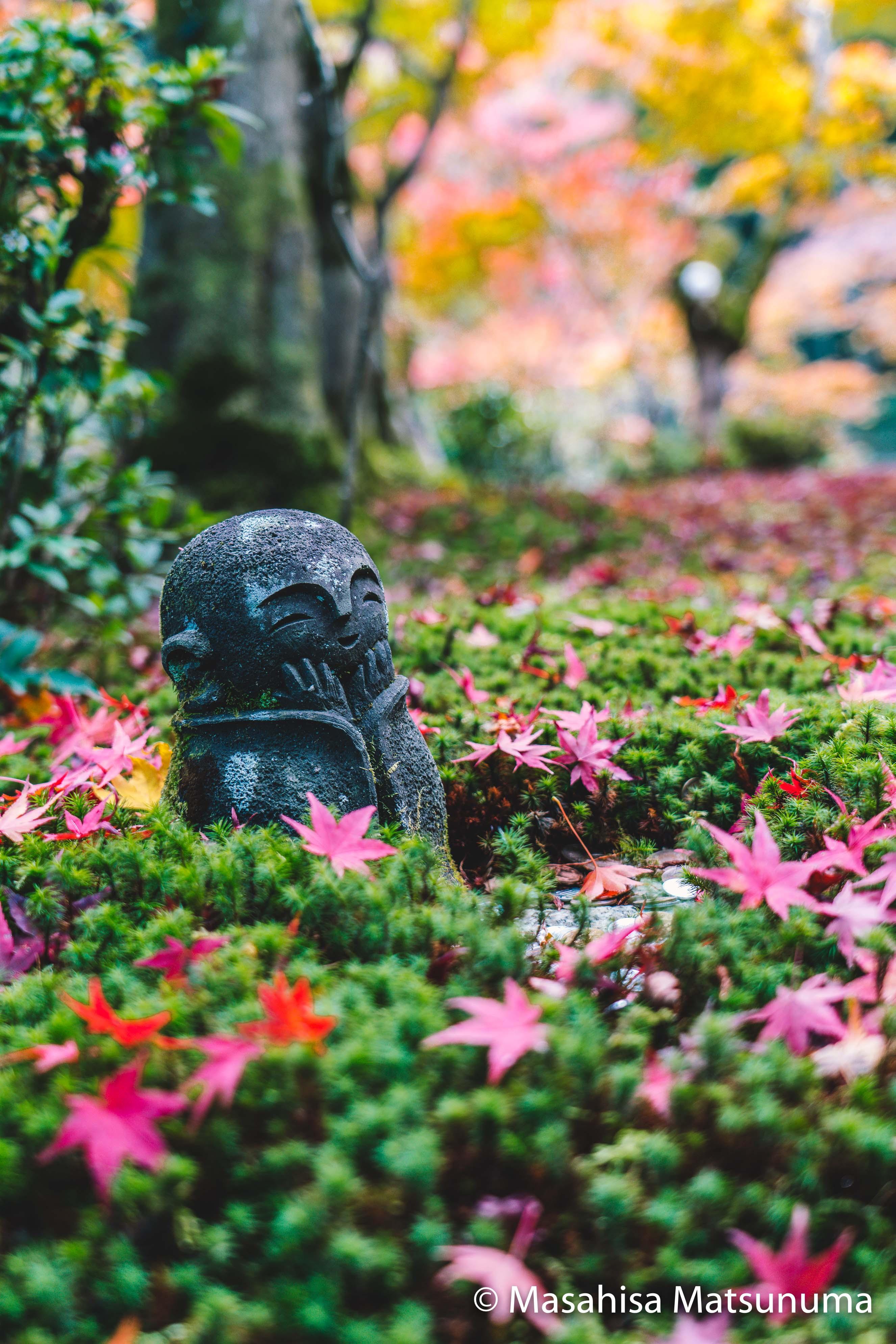 Enko-ji 圓光寺